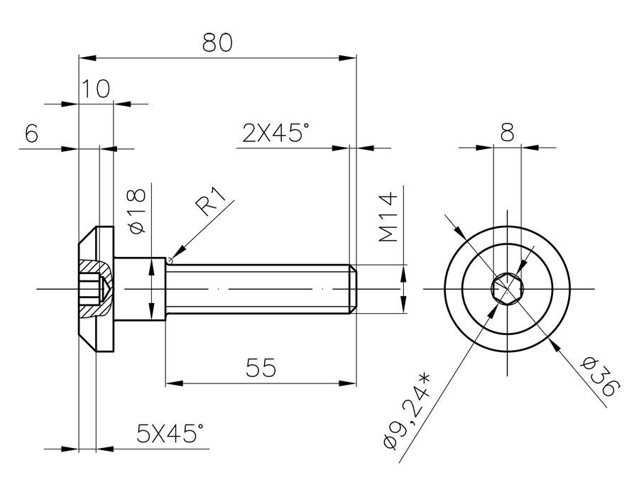 Винт M14x80 для CF-01 (316)